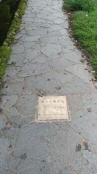 粟又の滝遊歩道②.jpg