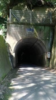 養老渓谷(向山トンネル①).jpg